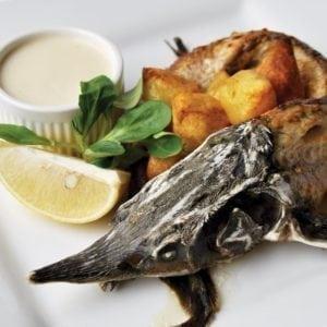Рыба и морепродукты | Fish and seafood
